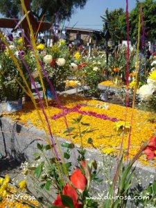 Flores decoración en cementerio Mixquic